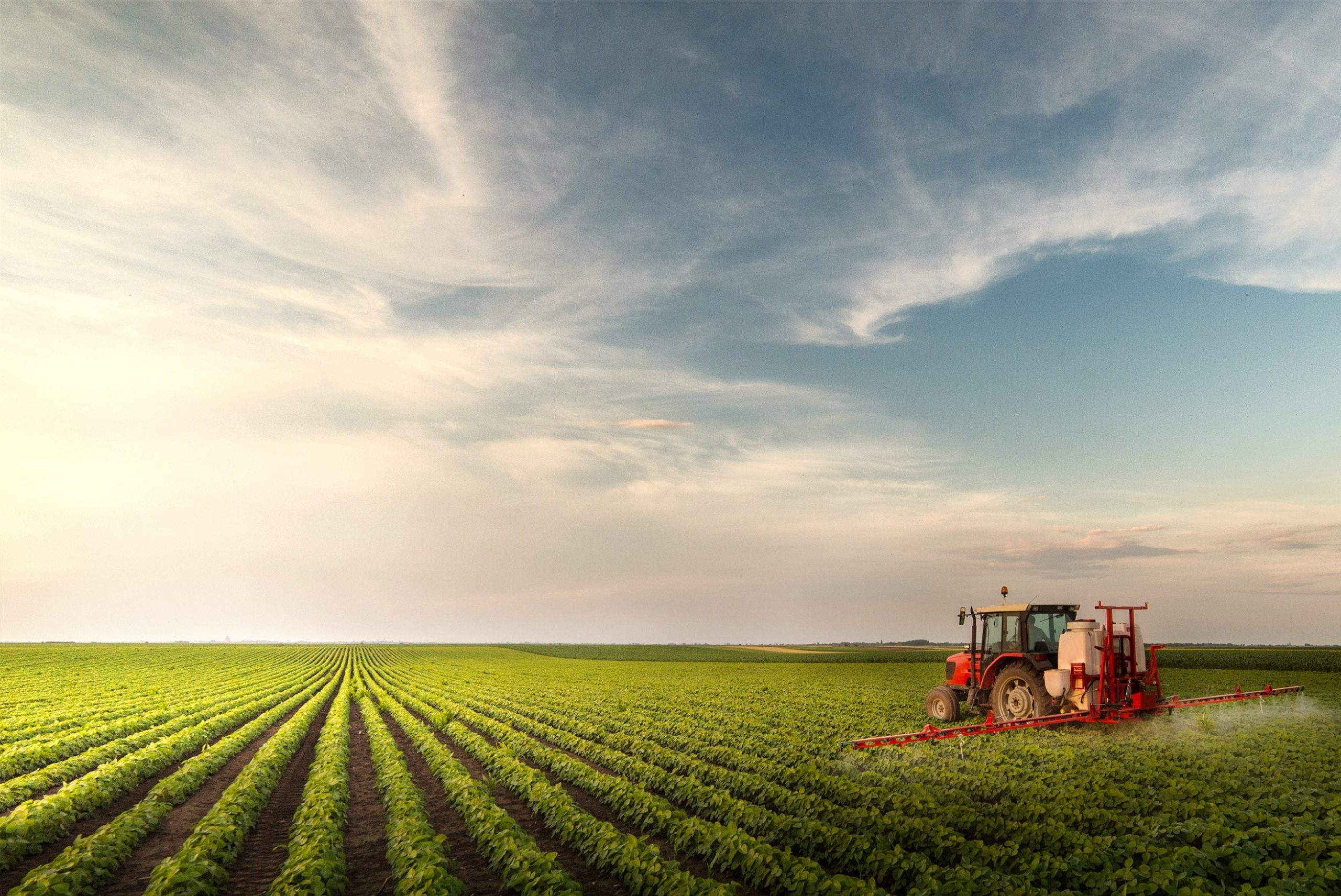 Tractor spraying glyphosate at soy bean field